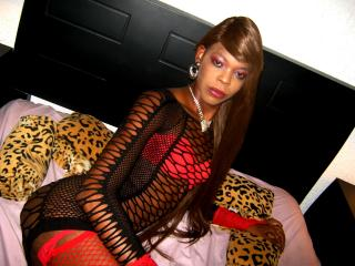 Picture of the sexy profile of KattyyEbonny, for a very hot webcam live show !